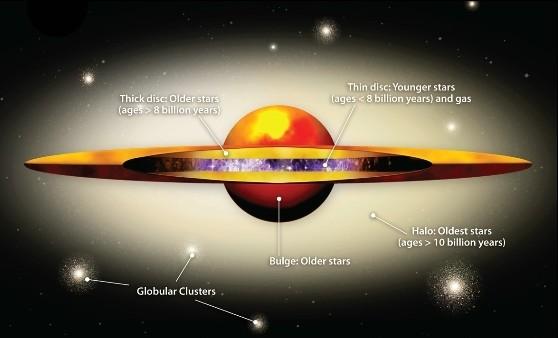 Схематический вид галактики Андромеды (М31).