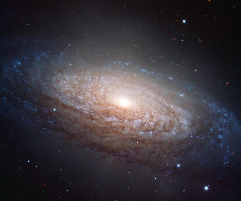 Галактика NGC 3521. Фото ESO/O. Maliy