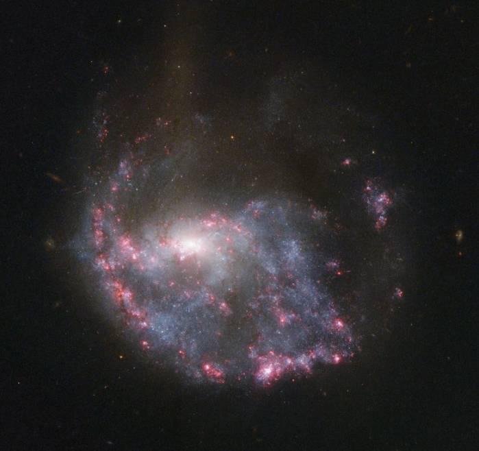 Галактика NGC 922.
