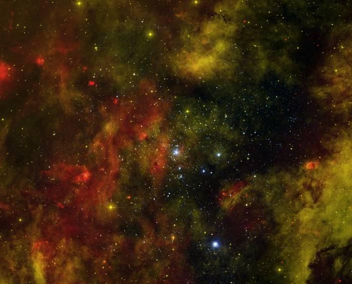 Звездное скопление Лебедь OB2.