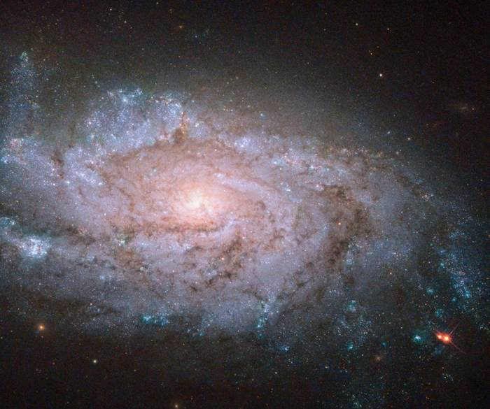Спиральная галактика NGC 1084.
