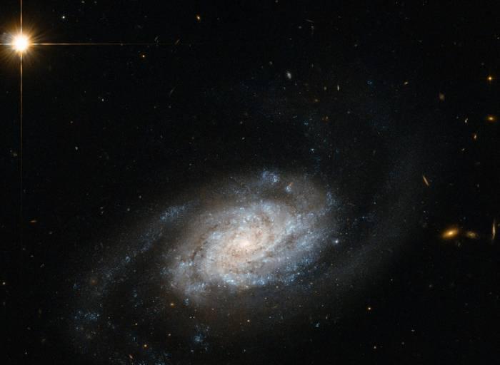 Спиральная галактика NGC 3455.