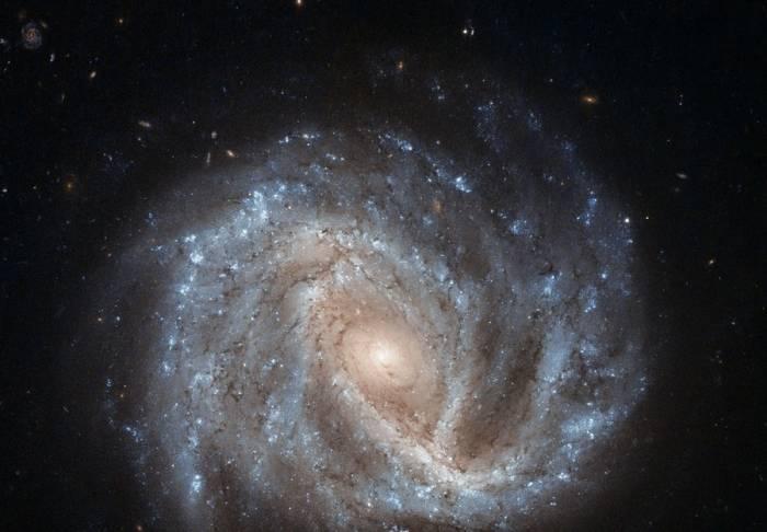 Спиральная галактика NGC 2441.