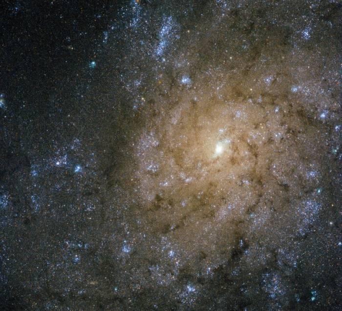 Спиральная галактика NGC 7793.