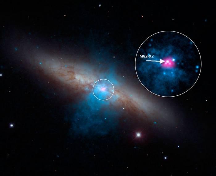 Местоположение пульсара M82 X-2 в галактике M82.