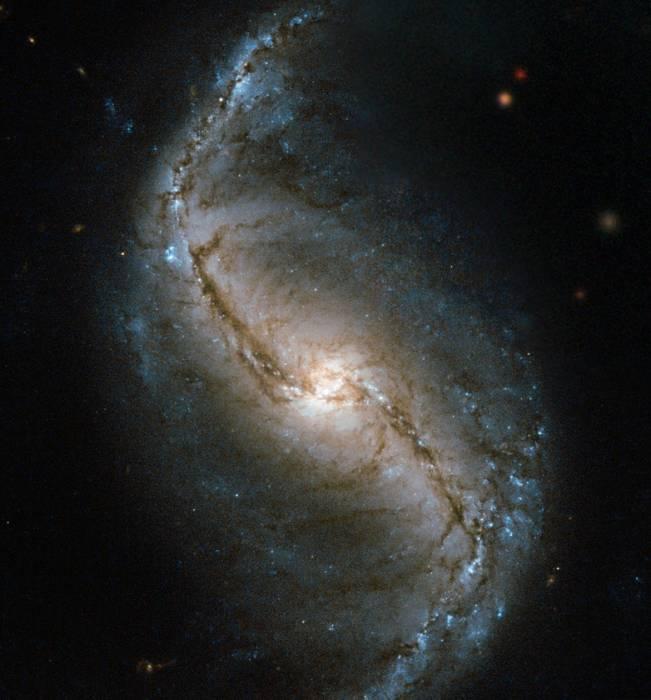 Спиральная галактика NGC 986.