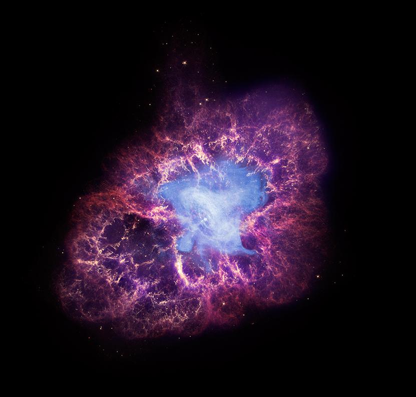 Крабовидная туманность (M1, NGC 1952). Фото NASA/Chandra
