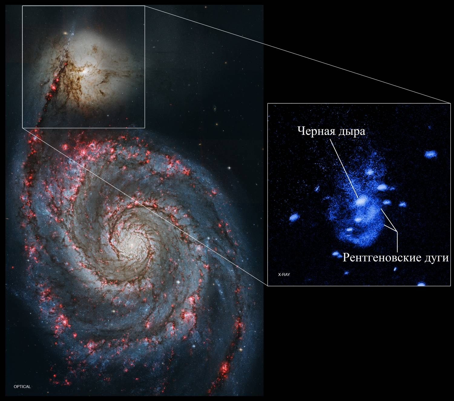 did the beginning of life on earth depend on black holes - HD1500×1262
