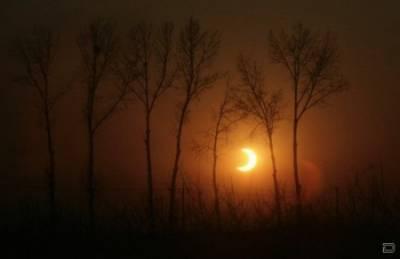 Кольцеобразное солнечное затмение CVAVR AVR CodeVision cvavr.ru