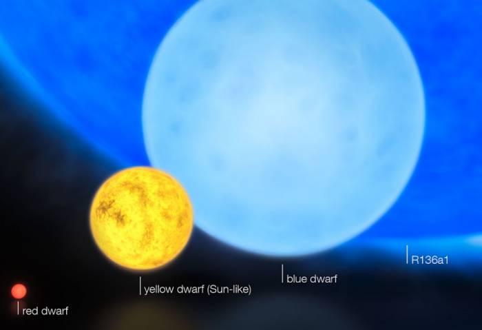 Сравнение размеров различных звезд (желтая - звезда типа Солнца, темно-синяя - гигант R136a1). Иллюстрация ESO/M. Kornmesser